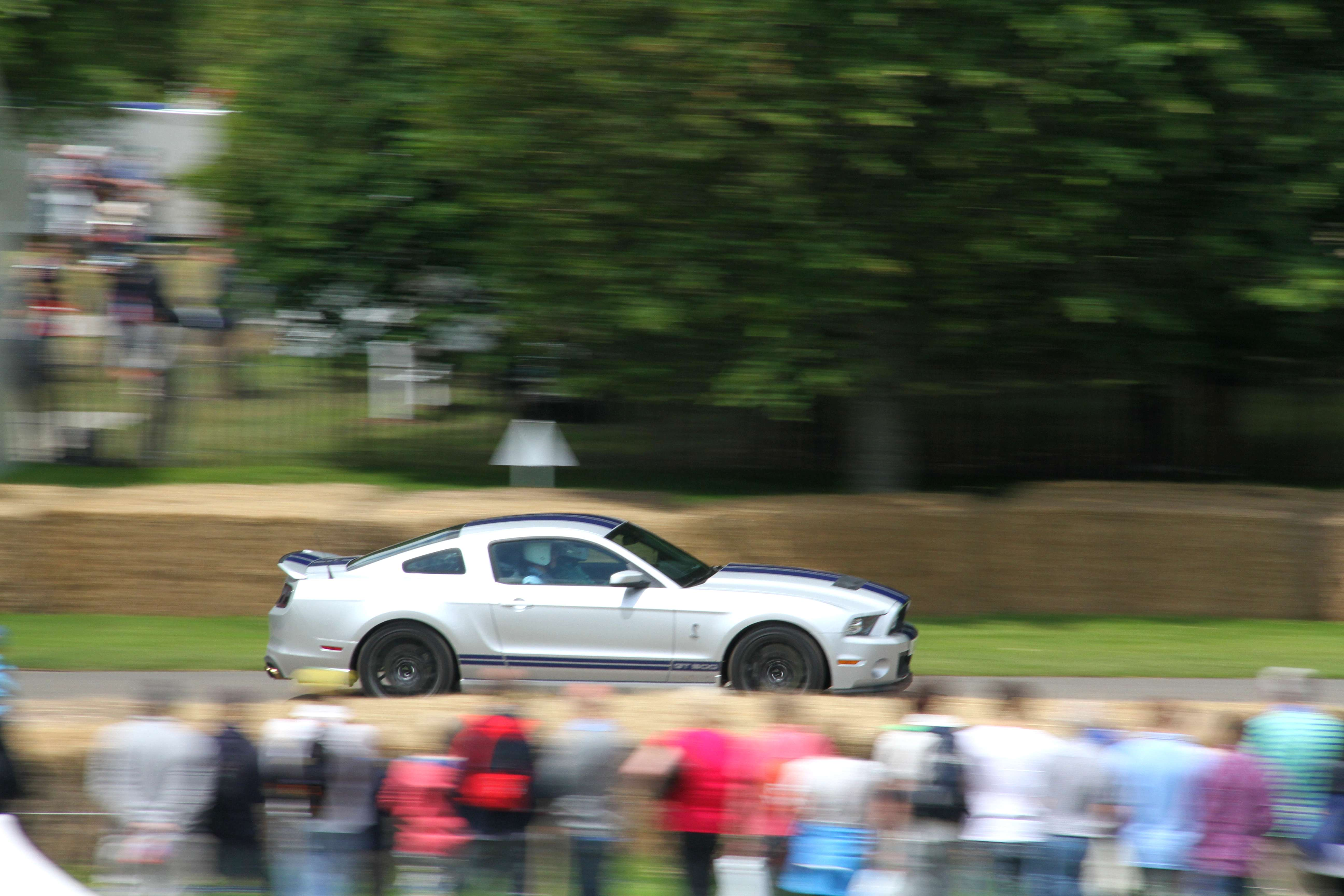 Ford Mustang GT500 Side