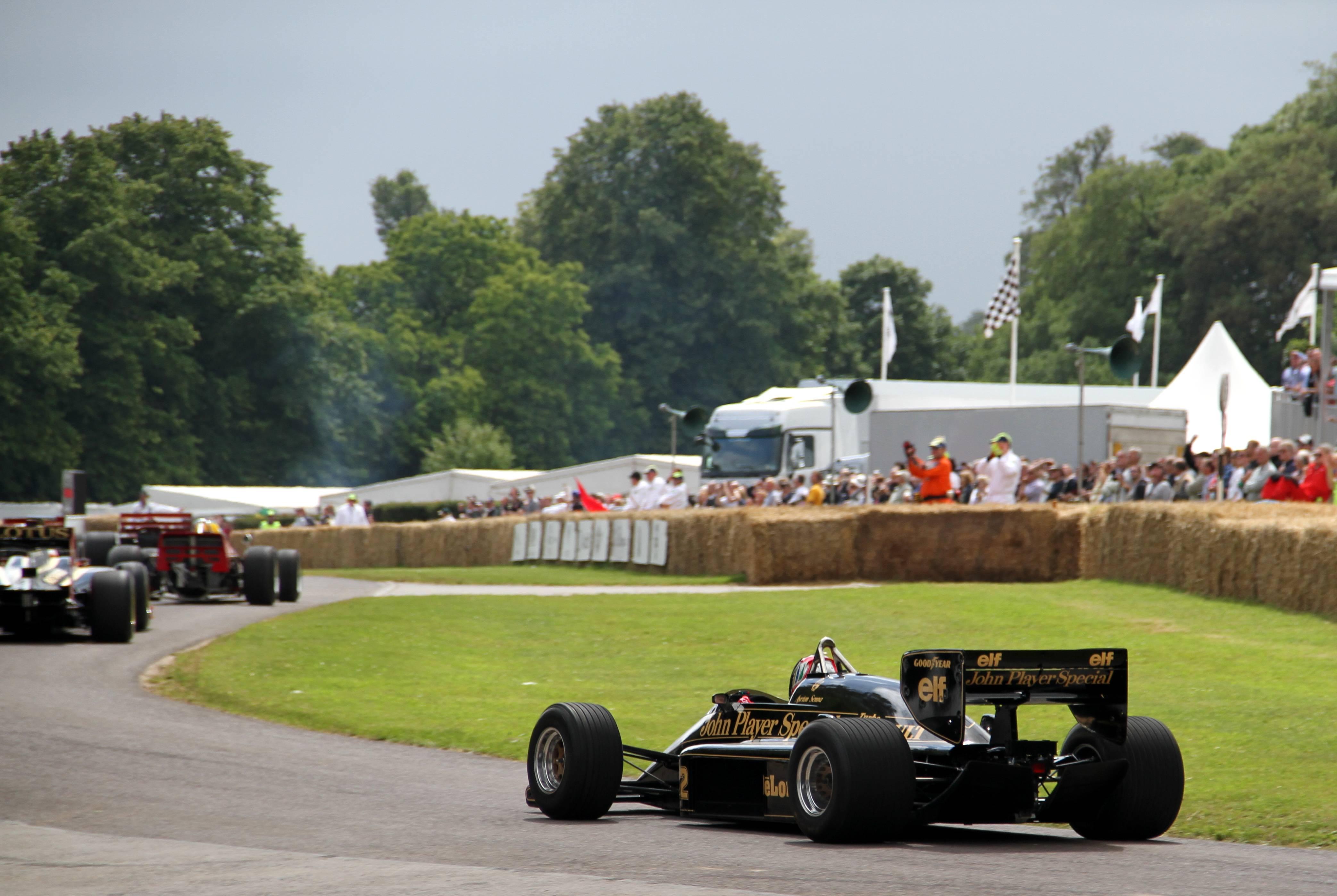 Lotus F1 3